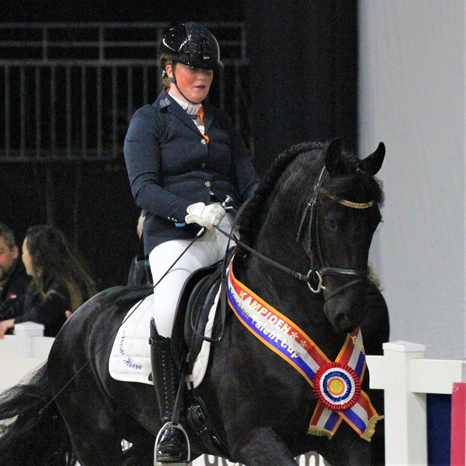 Yde v/d Noeste Hoeve winnaar Friesian Talent Cup Hengsten/Ruinen 2019 https://youtu.be/yHXs5p2e9ZQ