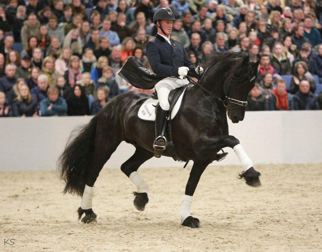 Rommert 498 Sport